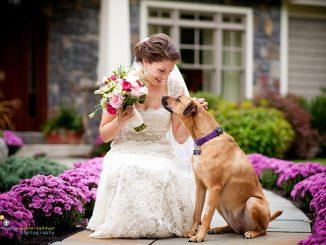 panna młoda z psem